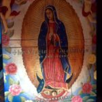 The Virgin of Guadalupe book