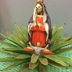 Virgin in Aloe Plant