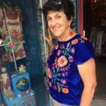 Blue velvet embroidered blouse