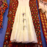 Dress with Phulkari background