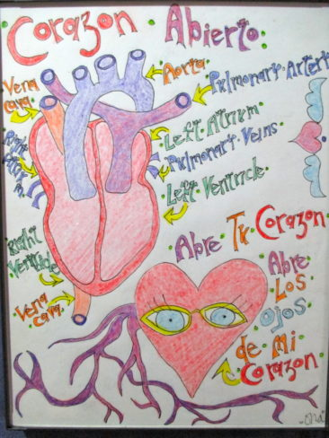Ona Kalstein, Corazon Abierto, ink and colored pencil on vellum, $125